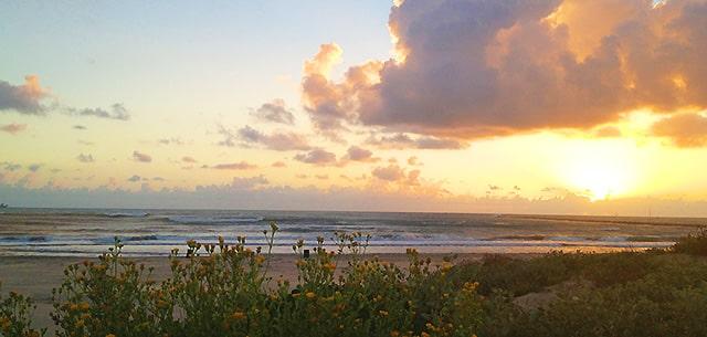 South Padre Island Beach Regulations