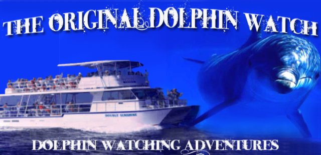 The Original Dolphin Watch (956)761-4243