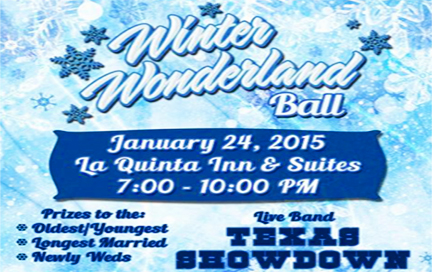Winter Wonderland Ball