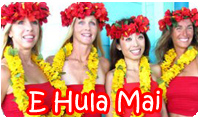 Hula Dancers from South Padre Island offering live performances for your event in the Rio Grande Valley